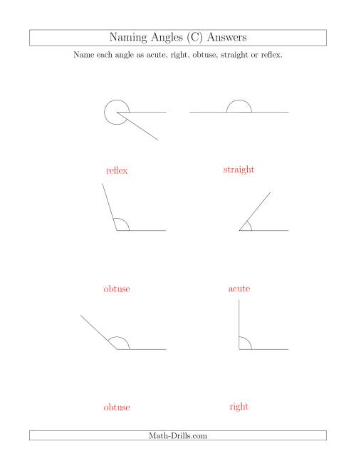 The Naming Angles (Acute, Obtuse, Right, Straight, Reflex) (C) Math Worksheet Page 2