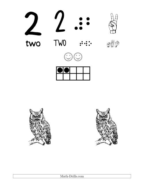 Number 2 Recognition Poster with a Bird Theme Number Sense